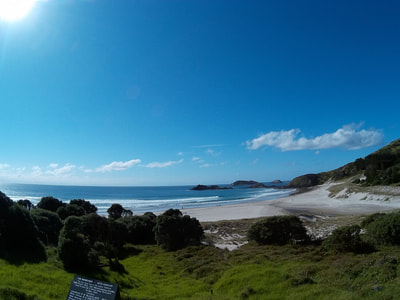 Images from Whangarei Heads